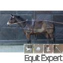 Harnais synthétique simple pour chevaux PFIFF 101297