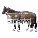 Harnais synthétique double pour chevaux PFIFF 101298