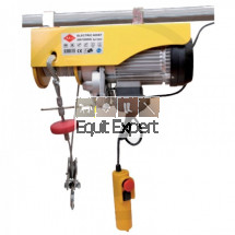 Treuil électrique 230V capacité de levage 250Kg